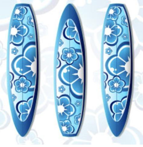 CAMPAMENTO SURF EN CANTABRIA